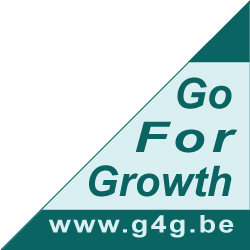 G4G Consulting